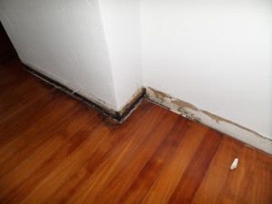 Home example of water damage