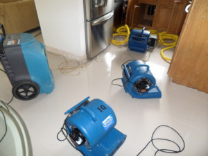 Water Damage Repair Miami
