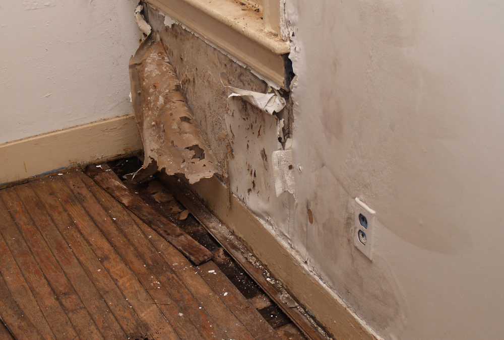 Detecting water damage in your old house